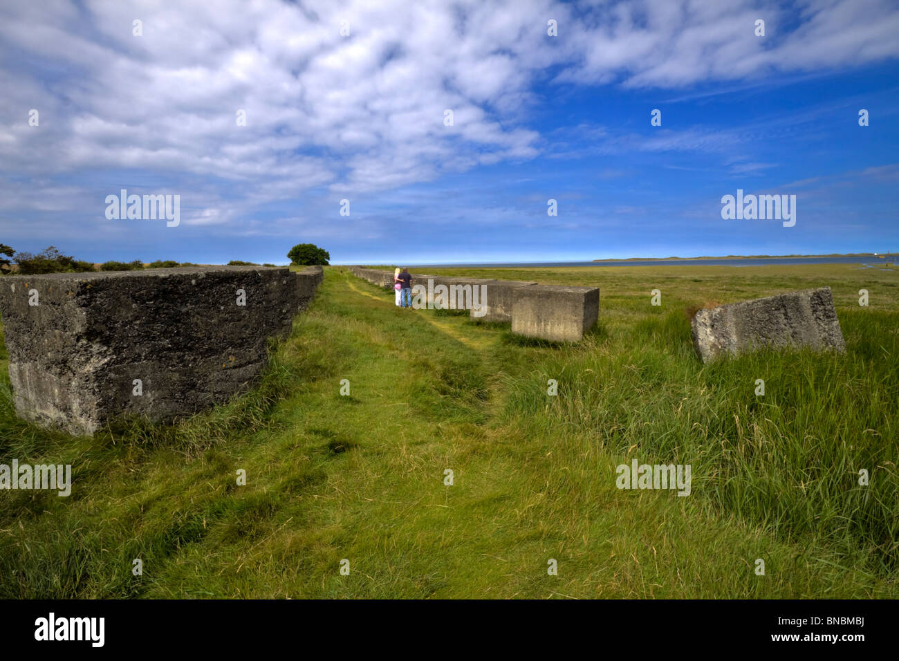 Coastal Defences in Beal, Northumberland. Large concrete blocks placed to prevent tank invasion during World War - Stock Image