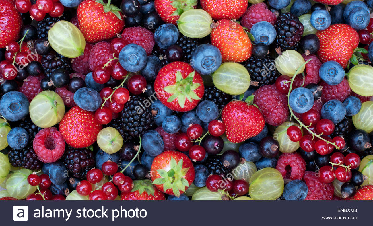 Picked English summer berries and fruit pattern from above. - Stock Image