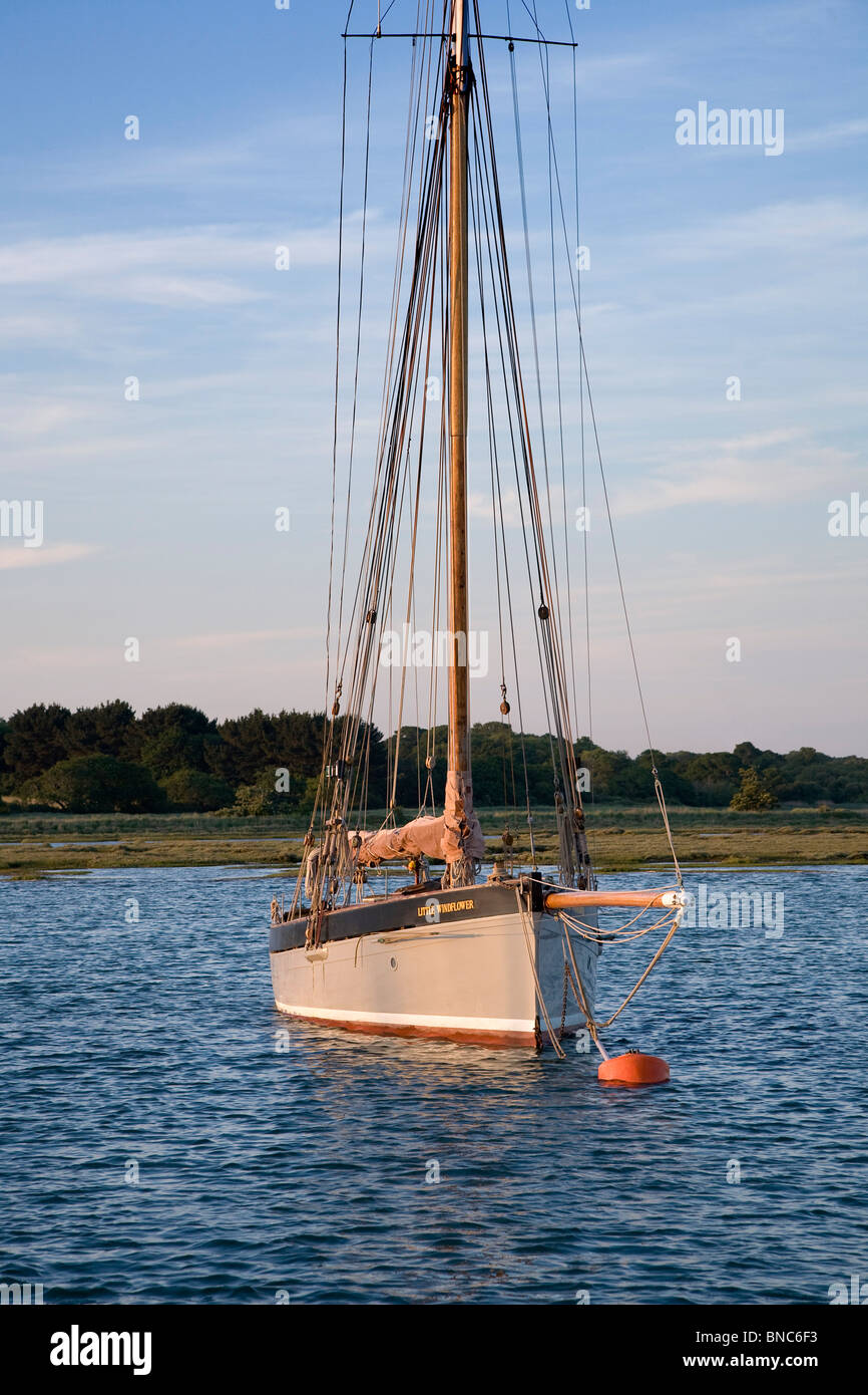 Grey hull old gaff rigged sailing boat moored to bouy in a quiet river surrounded by fields and trees - Stock Image