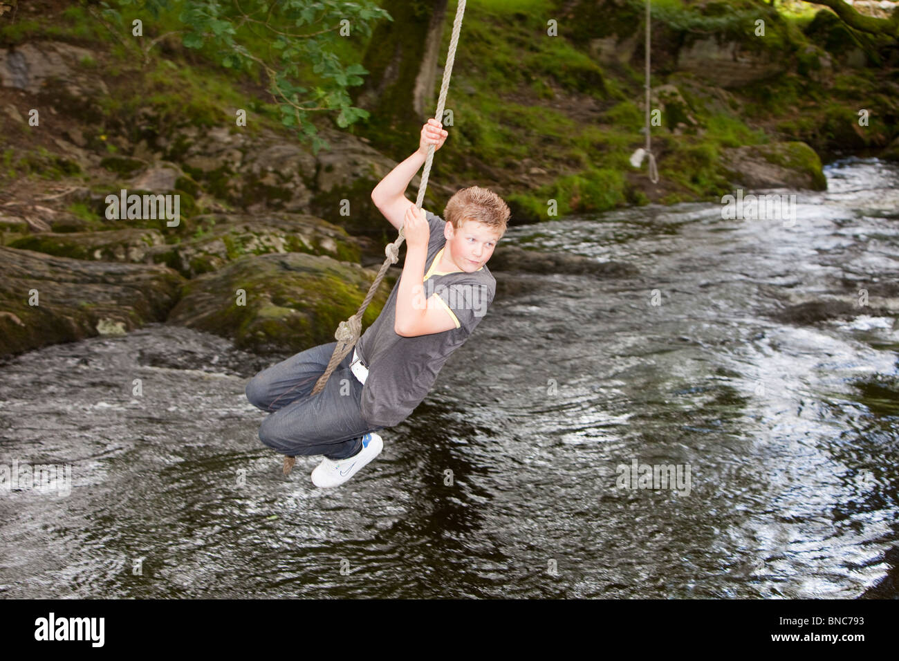 A young boy playing on a rope swing over the river Kent in Staveley, Lake District, UK. Stock Photo