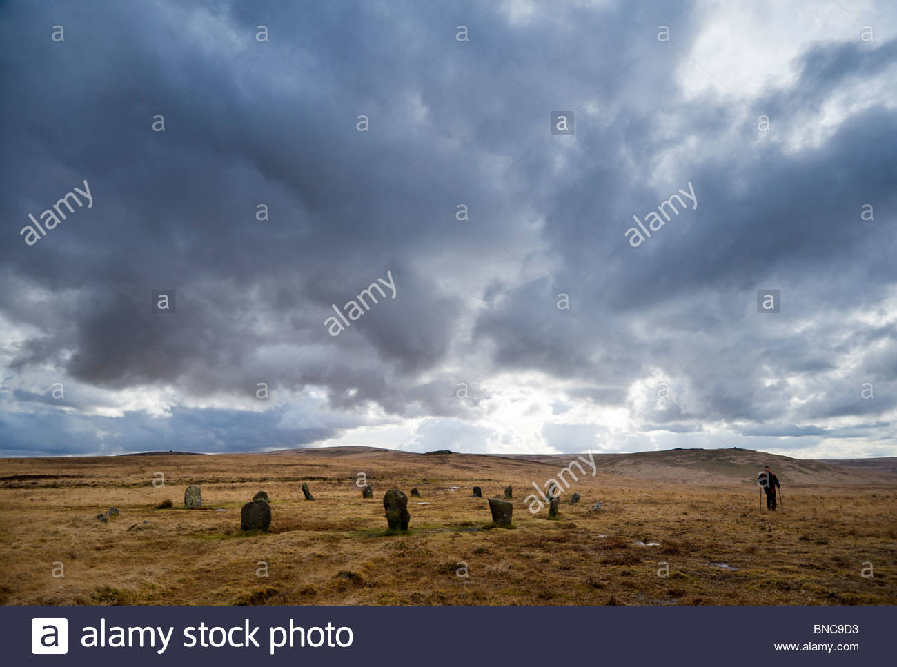 Walking past the stone circle on Cosdon Hill, North Dartmoor, Devon. - Stock Image