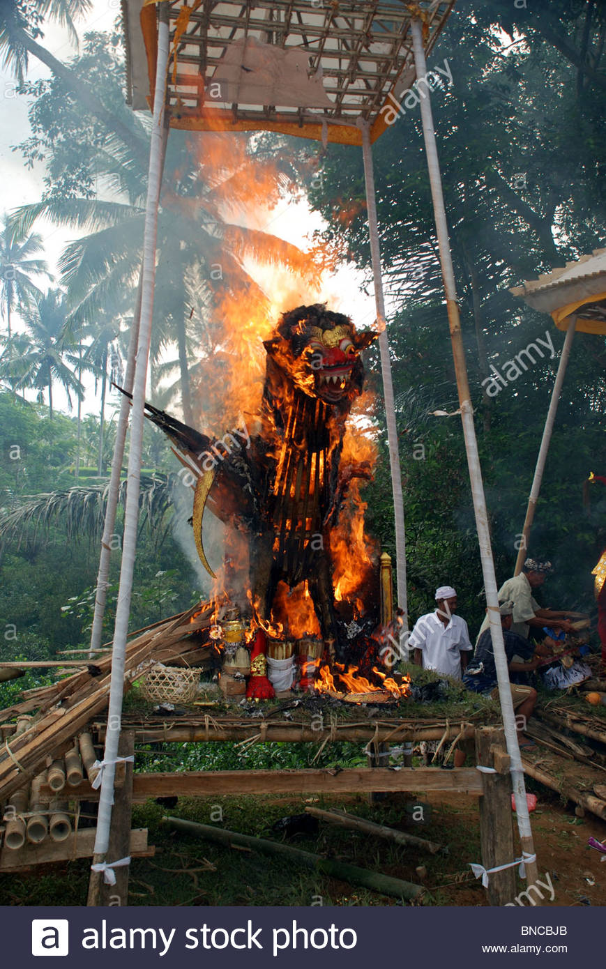 Ornate coffin under canopy in the form of a winged lion blazes in Hindu cremation ceremony Bangli Bali Indonesia - Stock Image