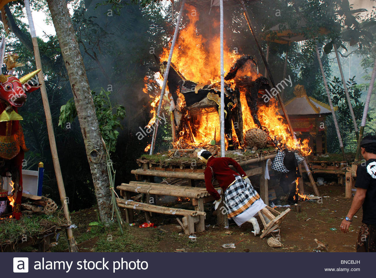 Two bull shaped coffins blaze in Hindu mass cremation ceremony an effigy of one of the deceased leans against the - Stock Image