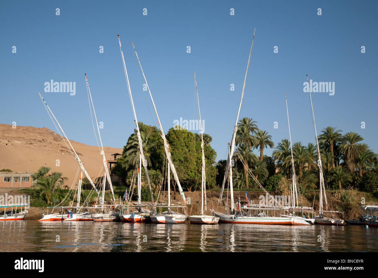 Feluccas moored on the bank,  the river Nile at Aswan, Upper Egypt - Stock Image
