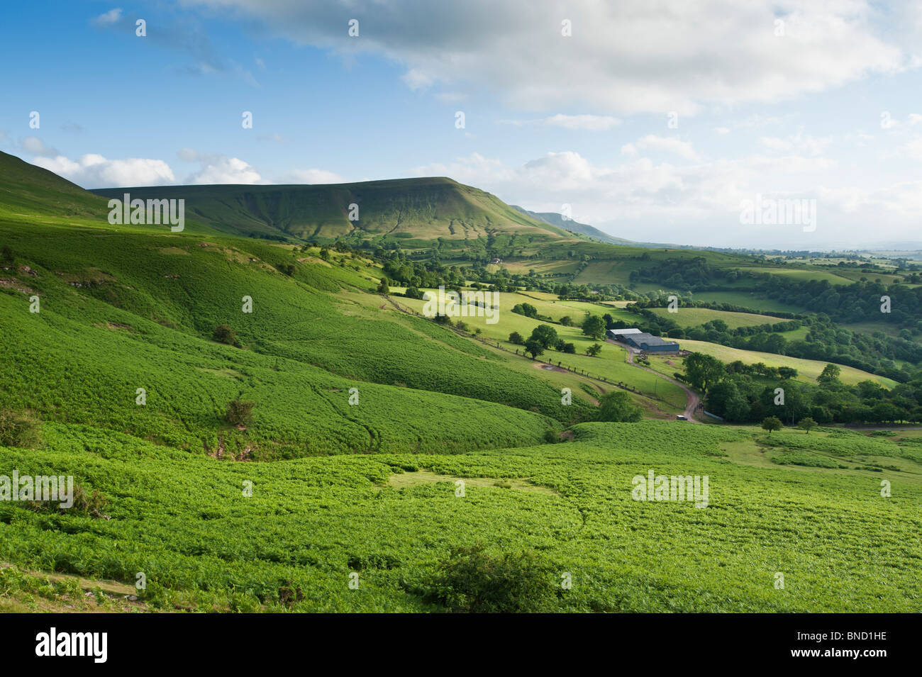 View over common and farm lands towards Twmpa, Hay Bluff, Brecon Beacons national park, Wales - Stock Image