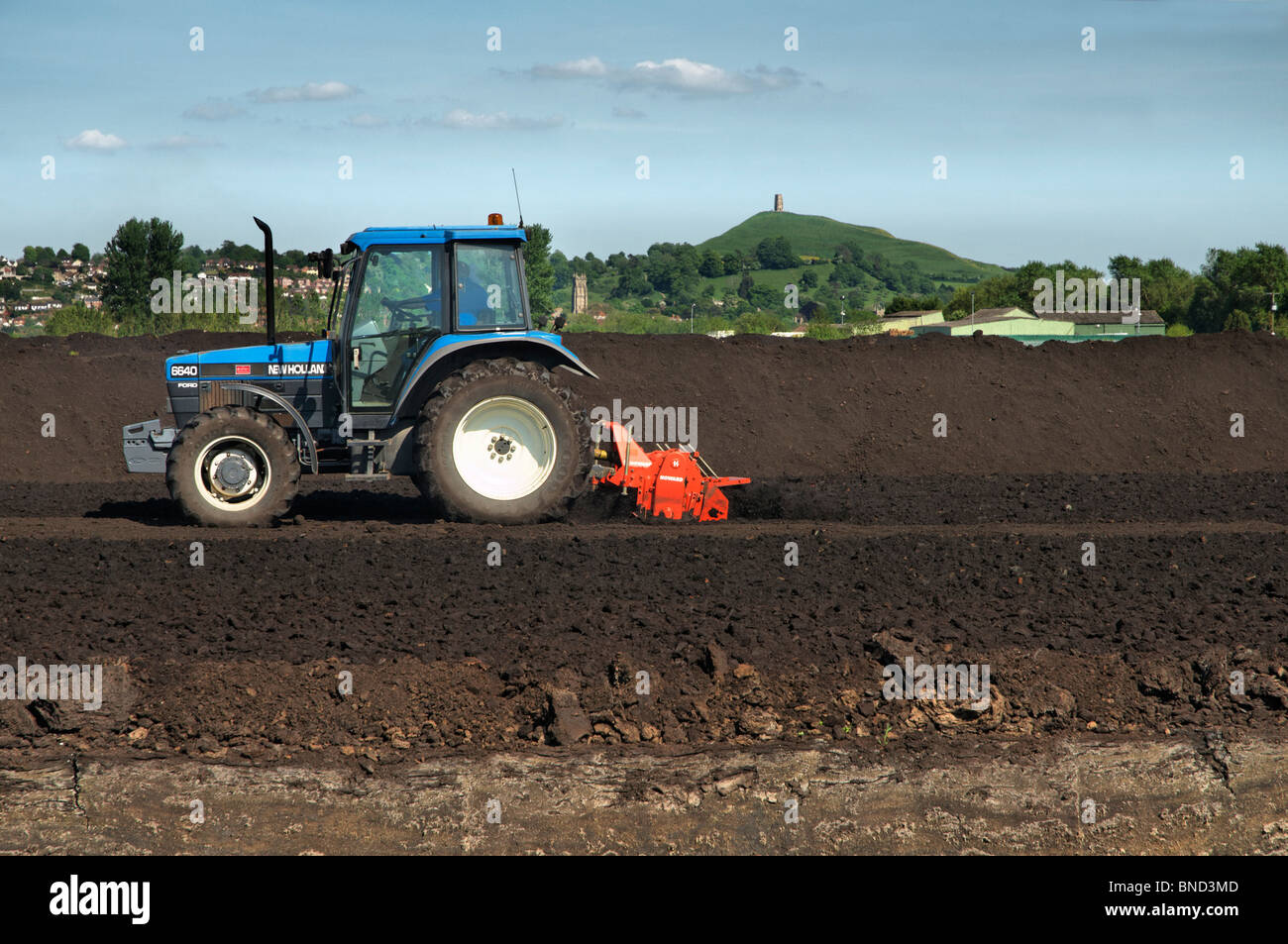 Peat cutting operation taking place on the Somerset levels near Glastonbury with Glastonbury tor in the Background - Stock Image