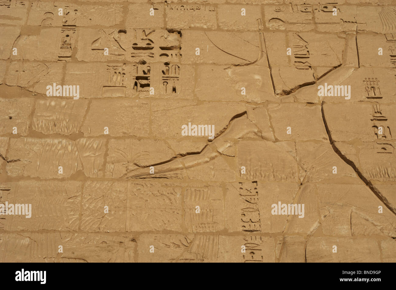 Temple of Ramses III. Relief depicting Ramses III capturing his enemies before Ra-Horajti. Detail of the pharaoh. - Stock Image