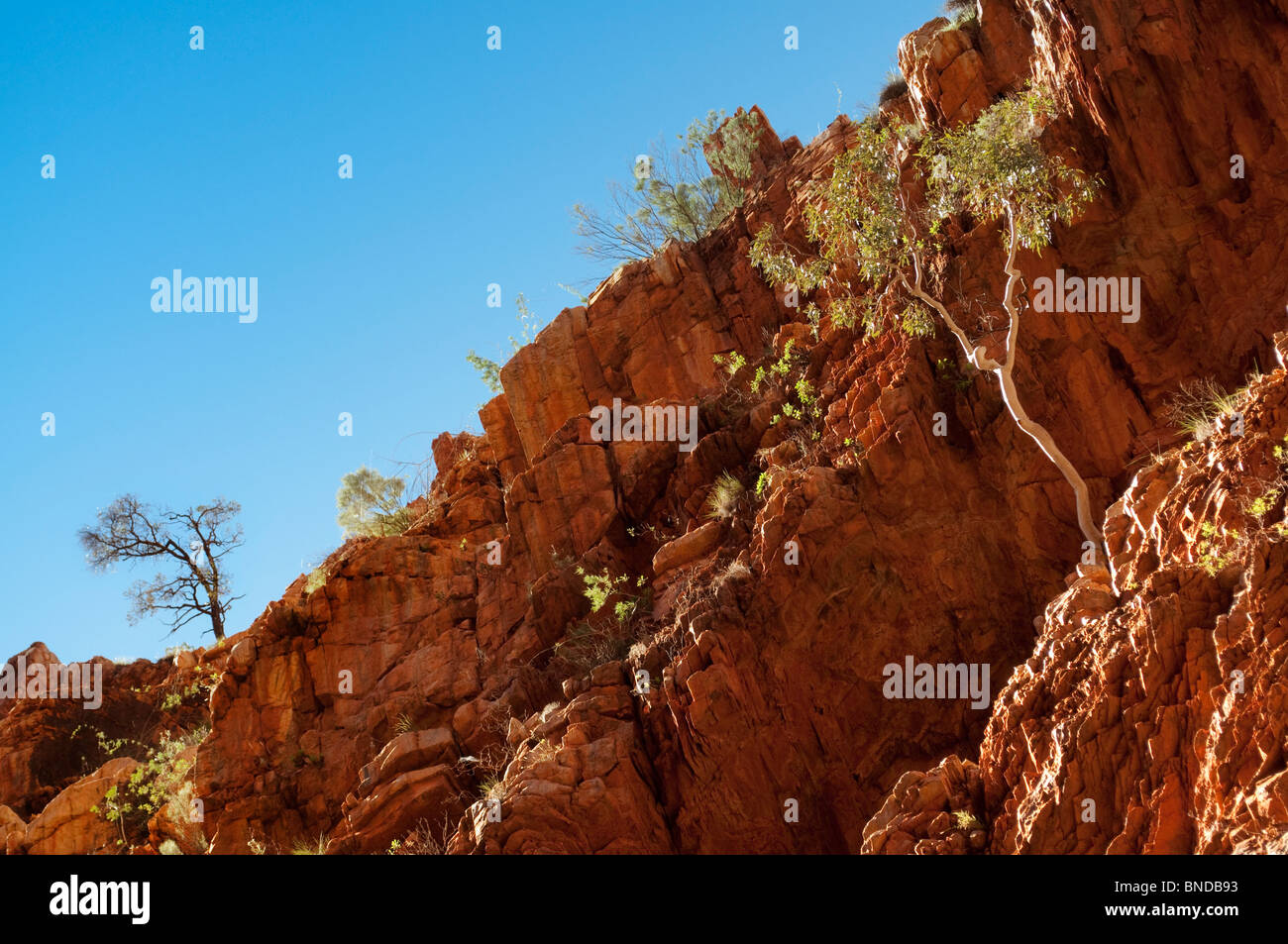 Standley Chasm, West MacDonnell National Park, Northern Territory, Australia - Stock Image