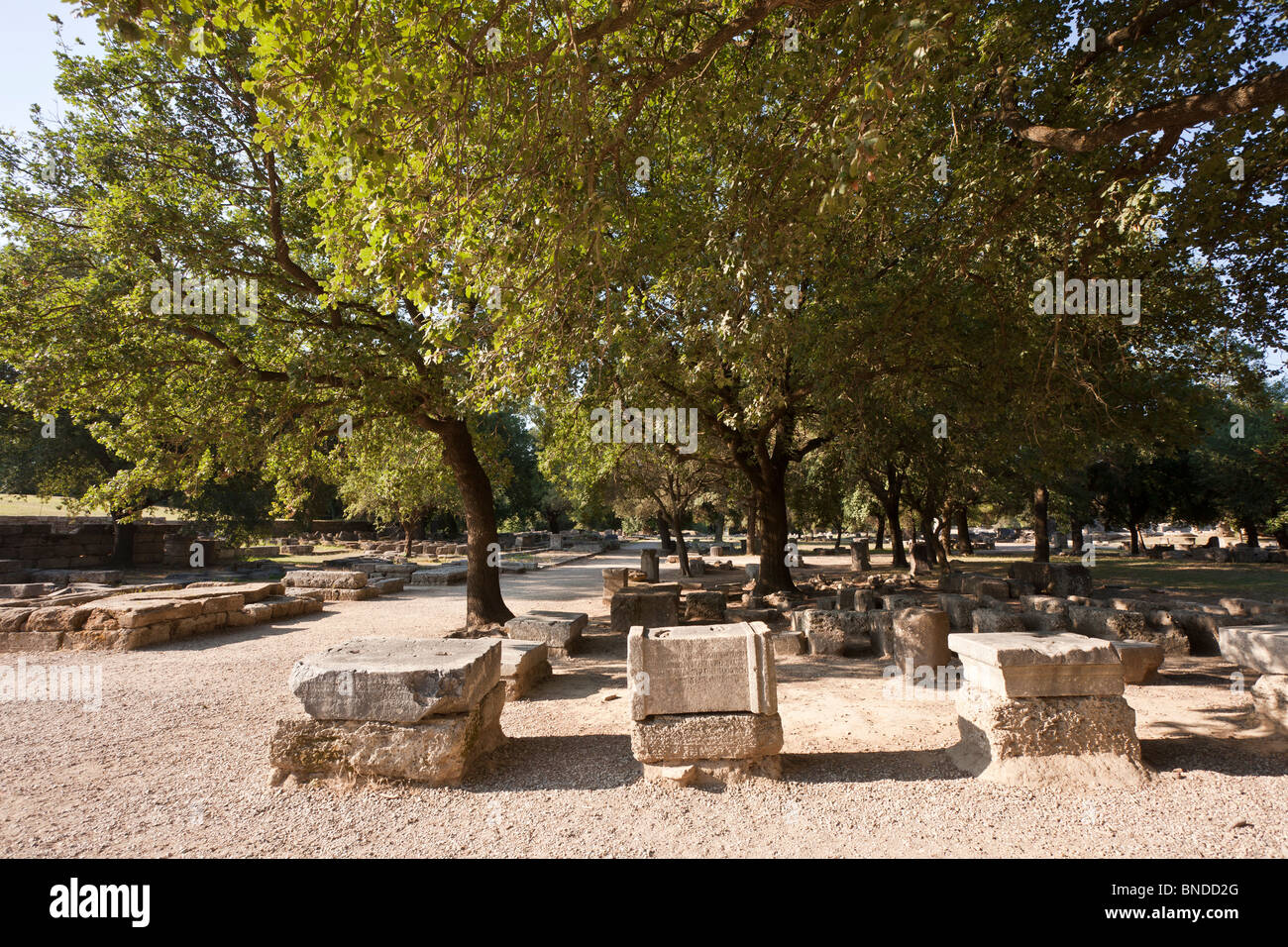 Bases of the Zanes among the ruins at Olympia, Greece. See description for more info. - Stock Image