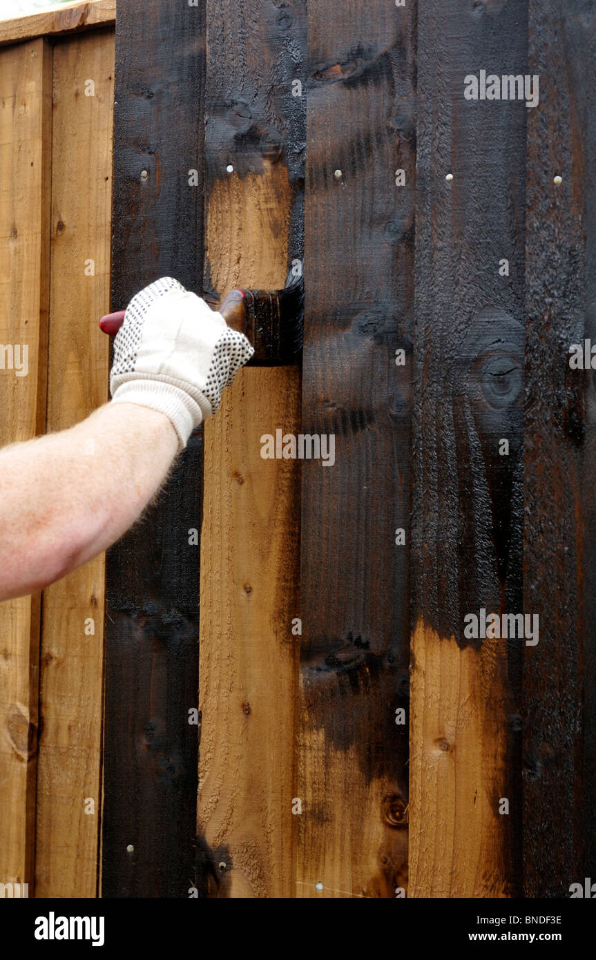 Man Wearing Glove Painting Wooden Fence With Creosote