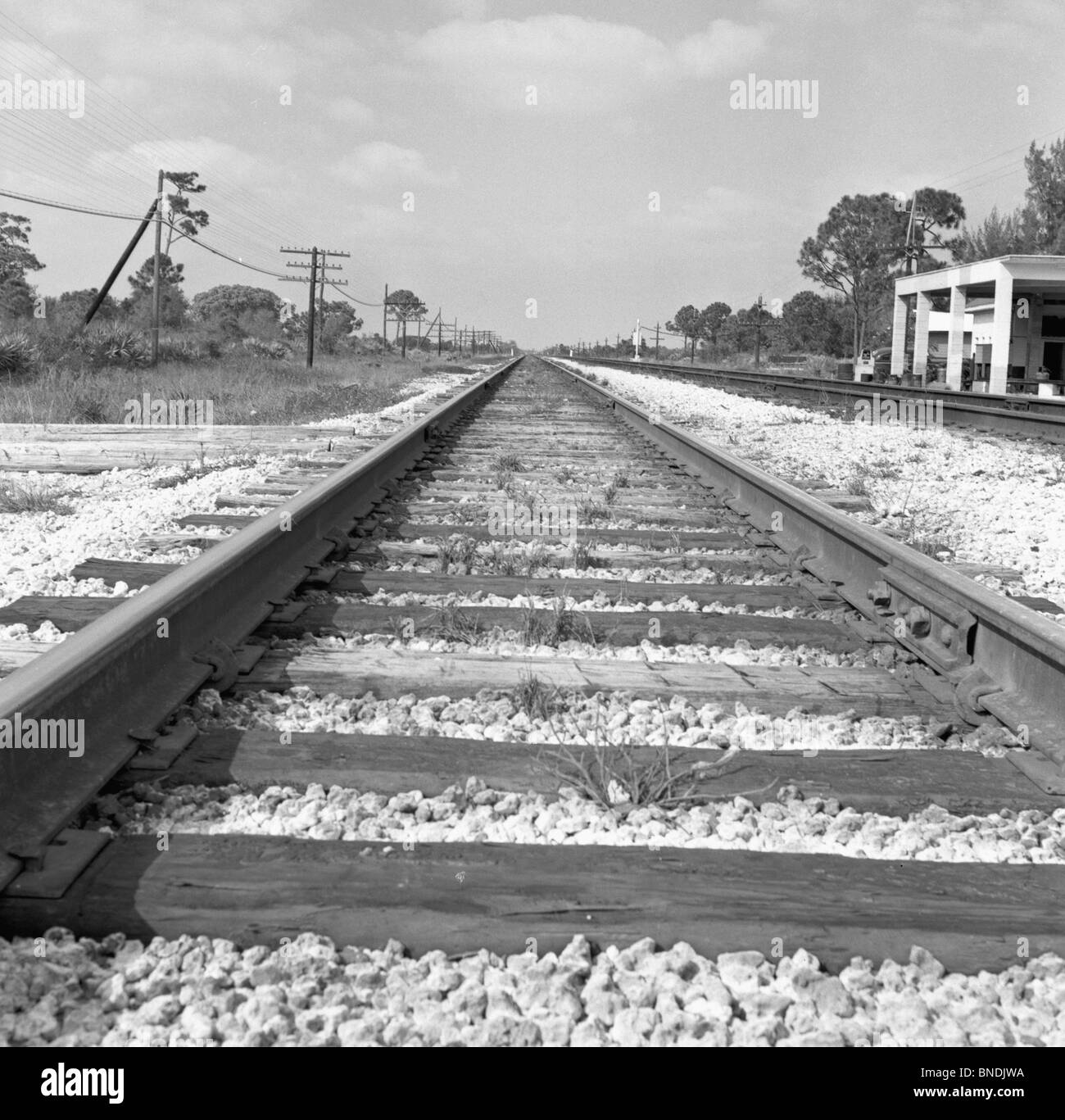 Railroad tracks passing through a landscape - Stock Image