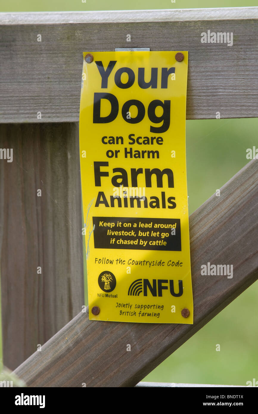 Your Dog can scare or hatm farm animals warning sign - Stock Image