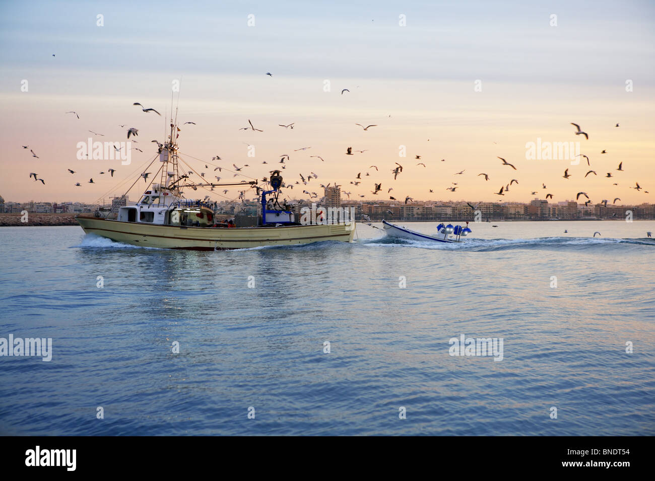 professional fishing boat and seagull turn back port on sunset sunrise Stock Photo