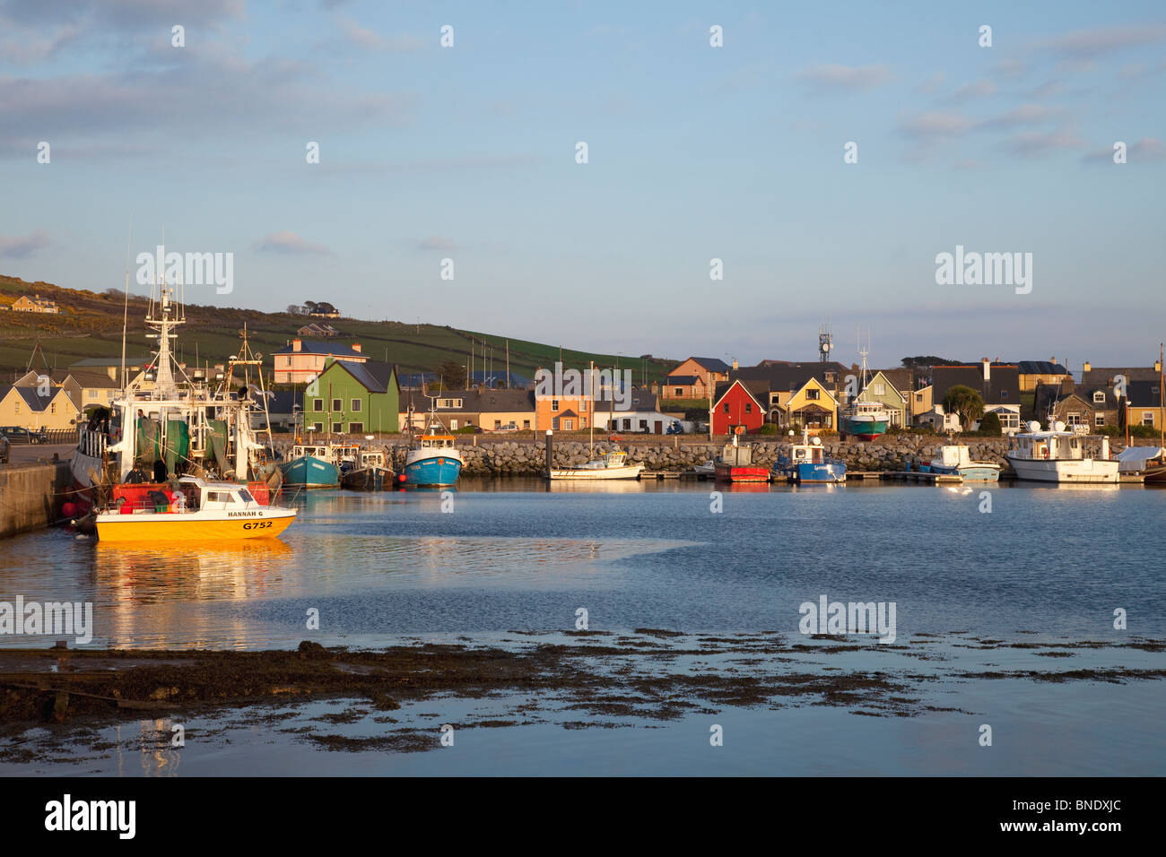 Evening light on fishing boats in harbour Dingle Peninsula County Co. Kerry in spring sunshine Republic of Ireland - Stock Image