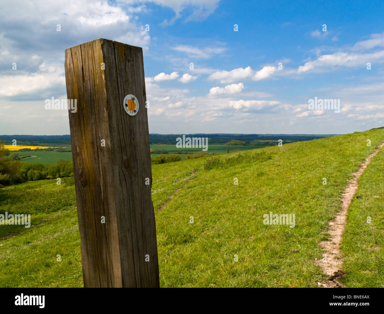 Wooden signpost on the Chiltern Way long distance footpath in Bedfordshire southern England UK - Stock Image
