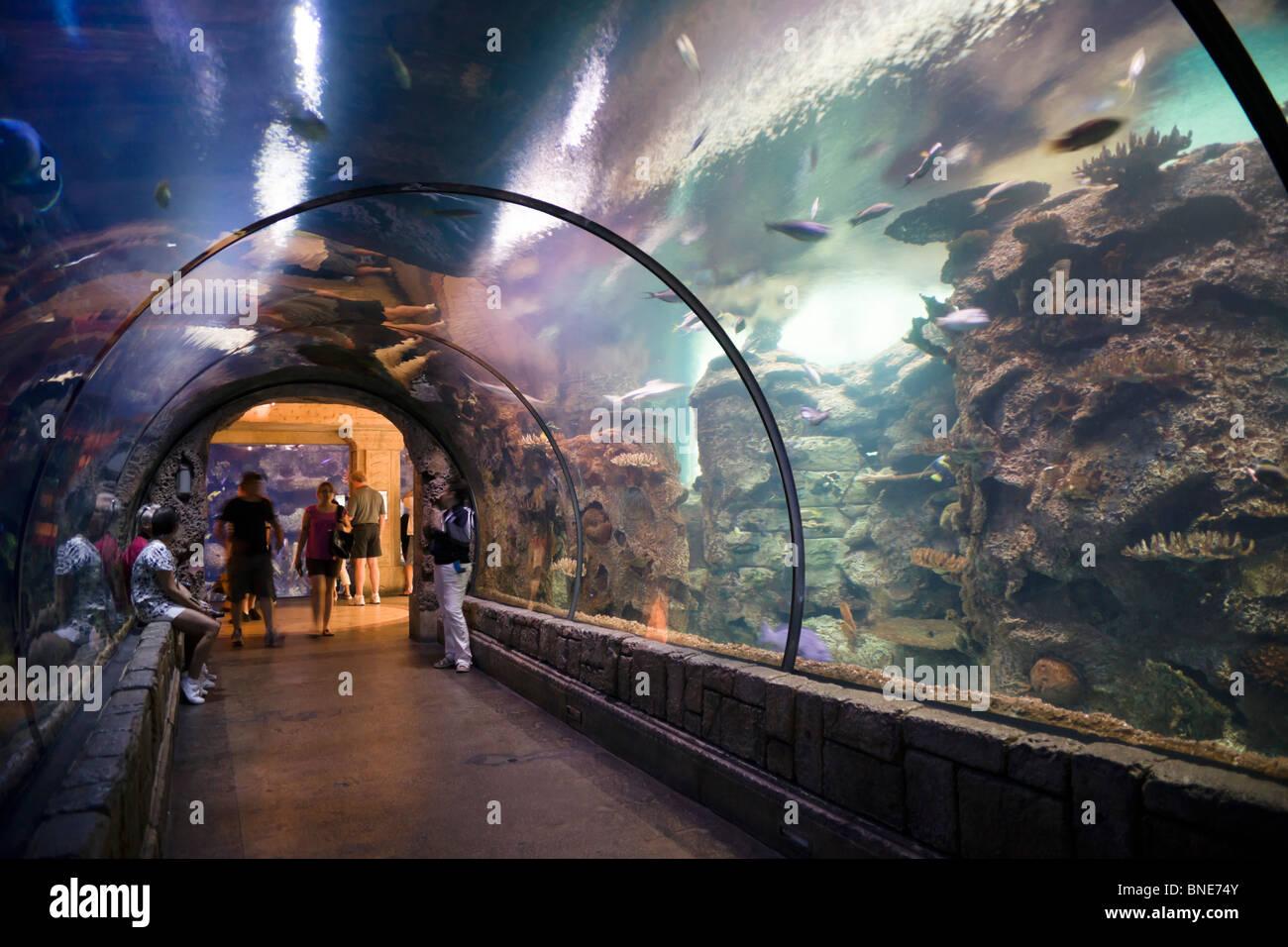 mandalay bay resort stock photos mandalay bay resort stock images