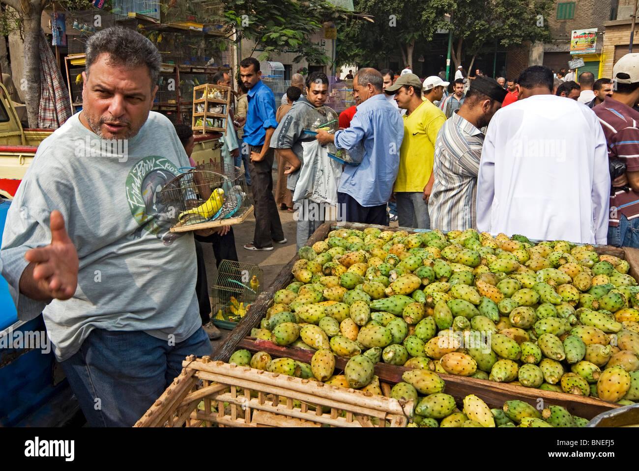 Fresh Food Market Cairo