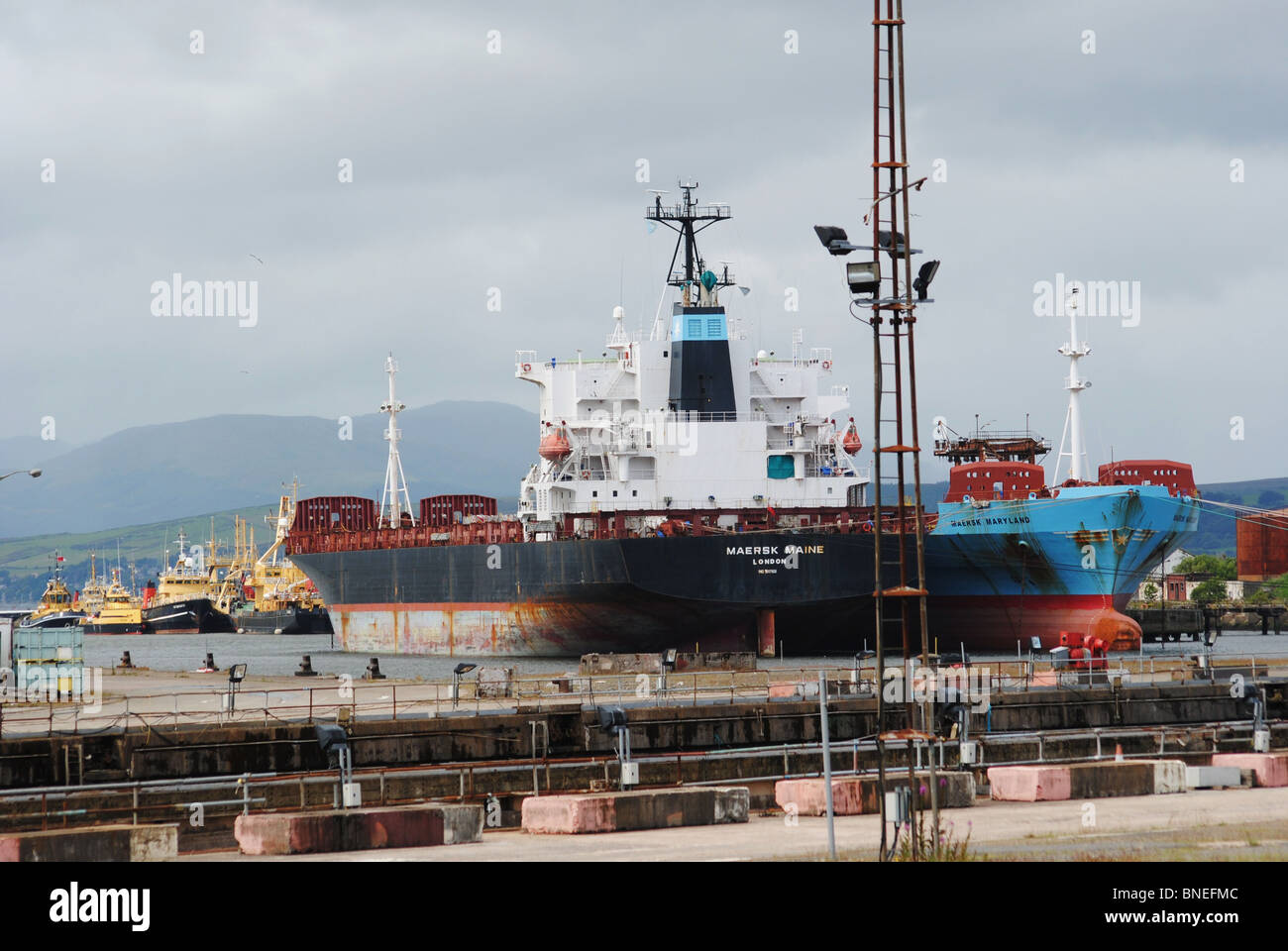 Ships in the dock. - Stock Image