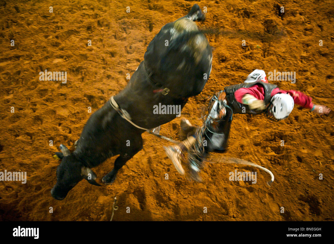Rodeo member of PRCA jumping from bull at Smalltown in Bridgeport Texas, USA Stock Photo
