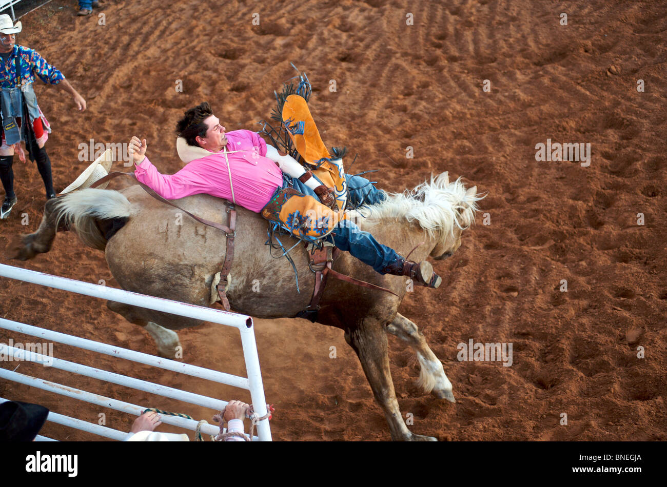 Horse trying to throw rodeo cowboy member of PRCA from its back in Smalltown Bridgeport, Texas Stock Photo