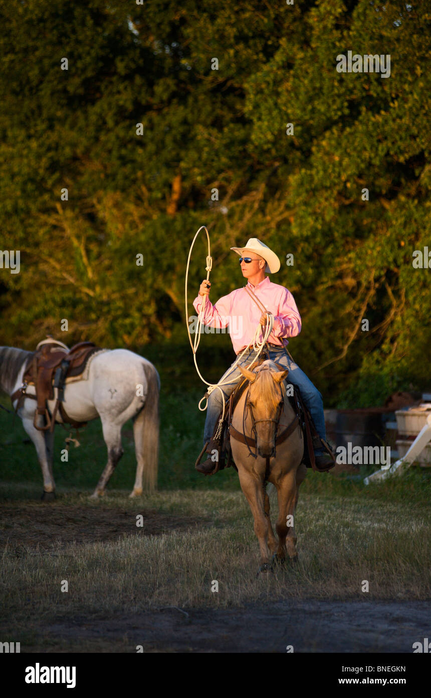 Cowboy riding horse backstage during PRCA rodeo event in Bridgeport Texas, USA Stock Photo