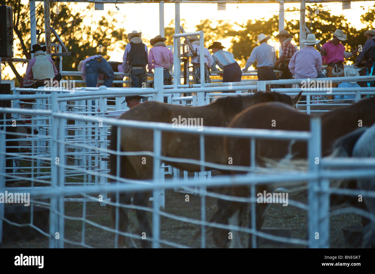 Cowboy members of PRCA at rodeo event in Bridgeport  Texas, USA - Stock Image
