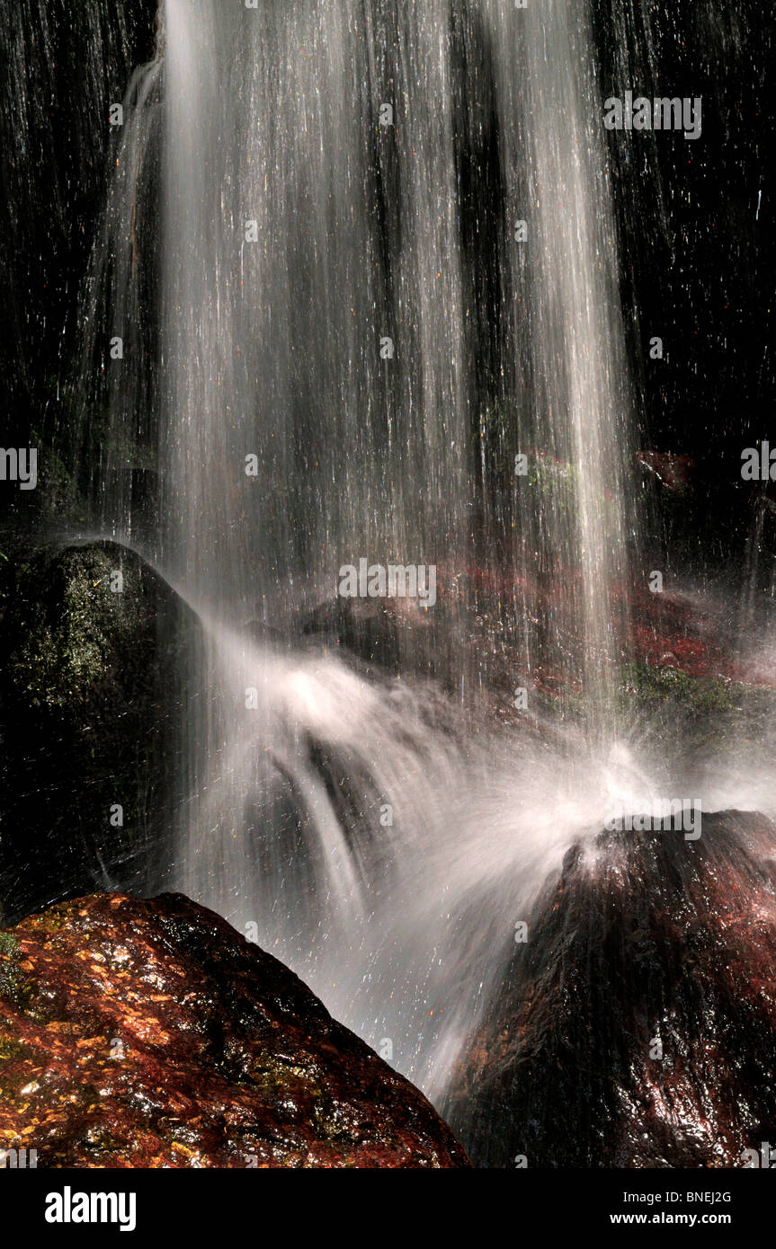 Germany, Black Forest: Waterfall in Menzenschwand - Stock Image