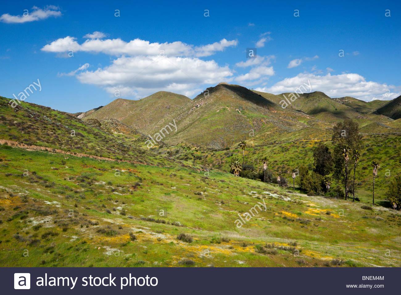 Springtime Hills of Lake Elsinore, California - Stock Image