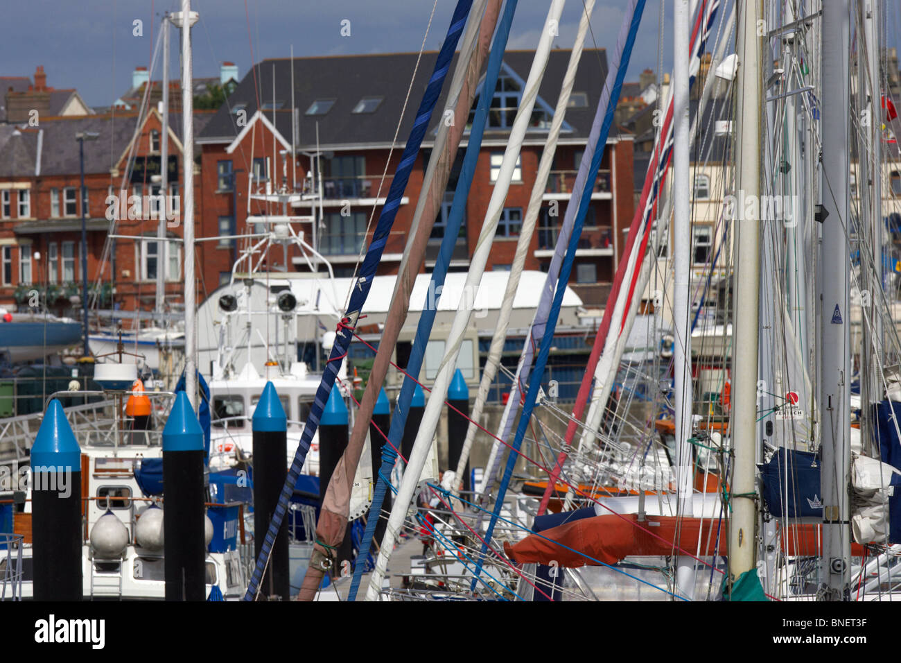 masts and rolled up sails of yachts and boats berthed in bangor marina county down northern ireland uk - Stock Image
