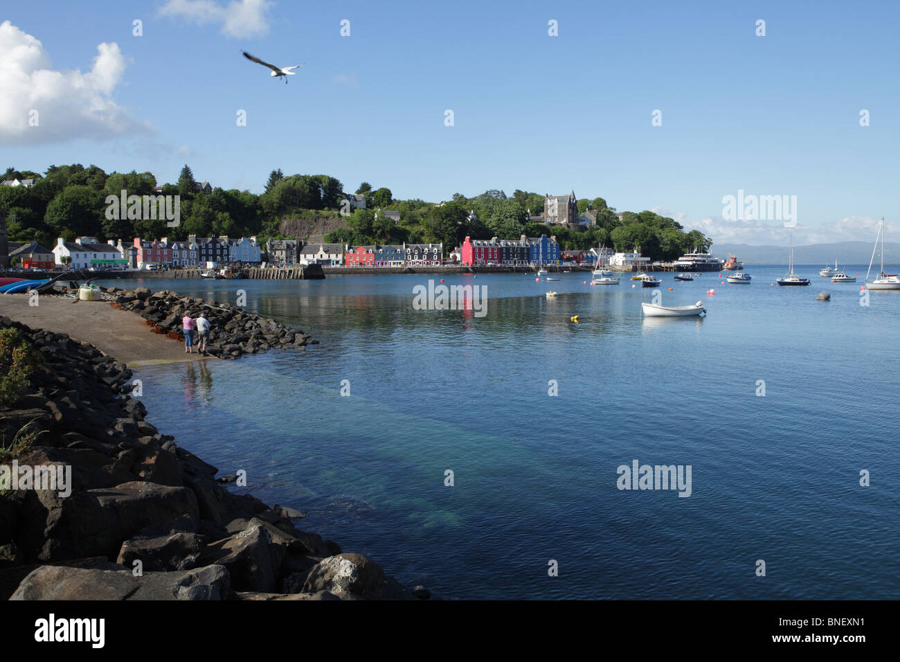 Tobermory bay on the Island of Mull - Stock Image