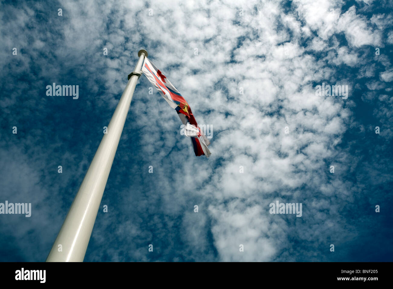 A skyward image of an RNLI flag fluttering at the top of a white flag pole set against a blue sky with speckled - Stock Image