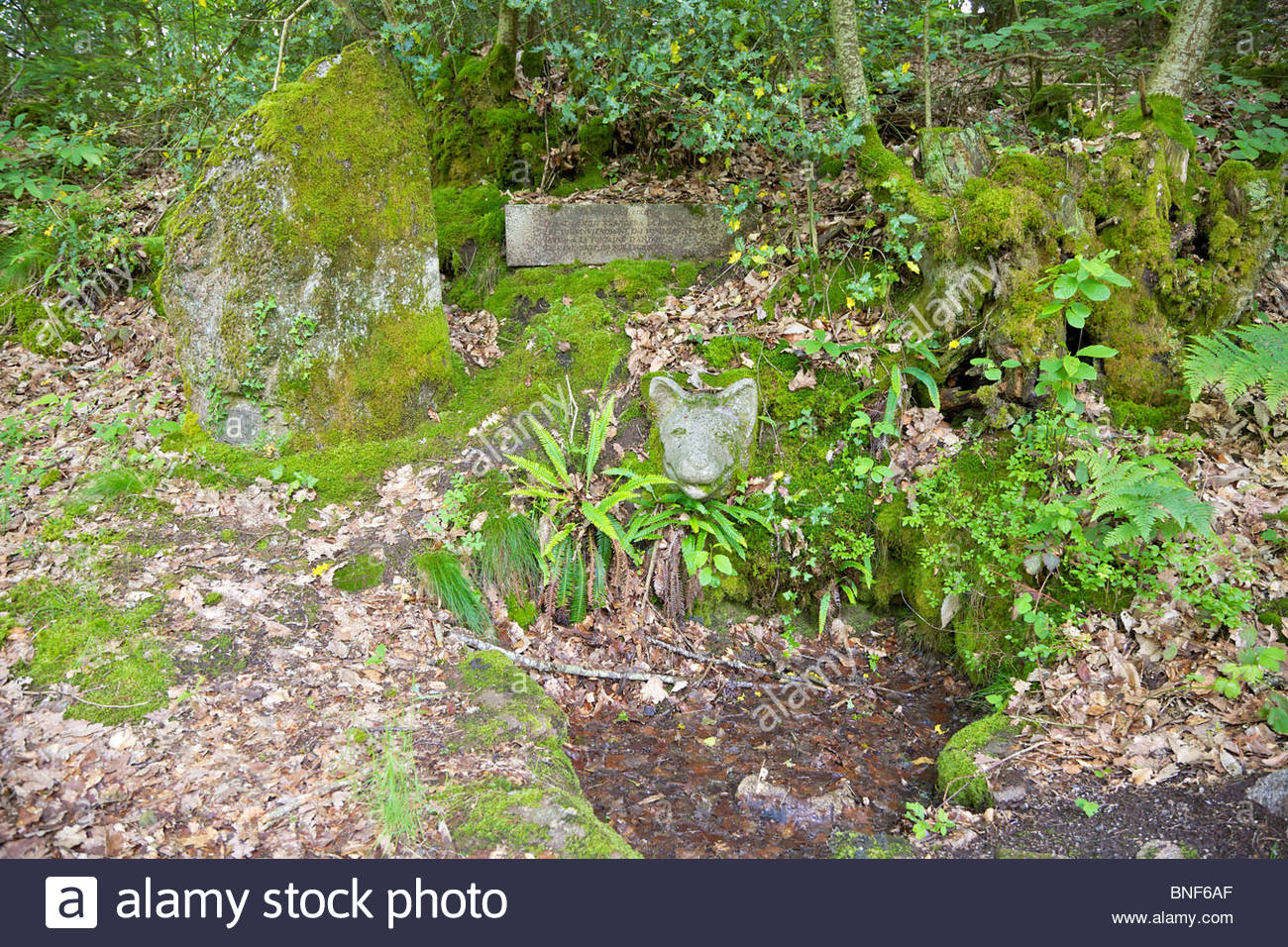 Old well (fontaine) hidden in the forest, covered with mosses and ferns. Near Dun-le-Palestel, La Creuse, Limousin, Stock Photo