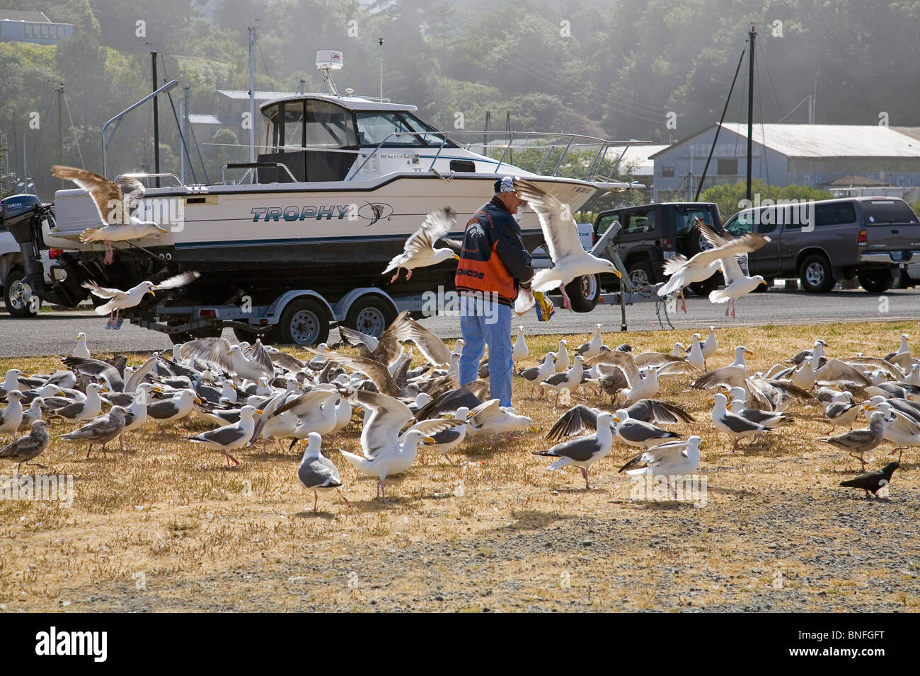 Boats in the harbor of Brookings, Oregon, on the Oregon Pacific coast. - Stock Image