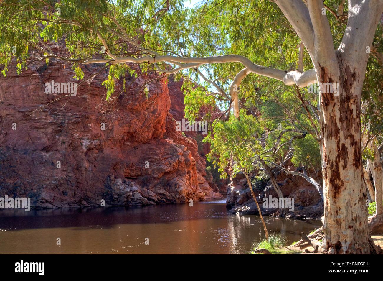 Ellery Creek Big Hole, West MacDonnell National Park, Northern Territory, Australia - Stock Image