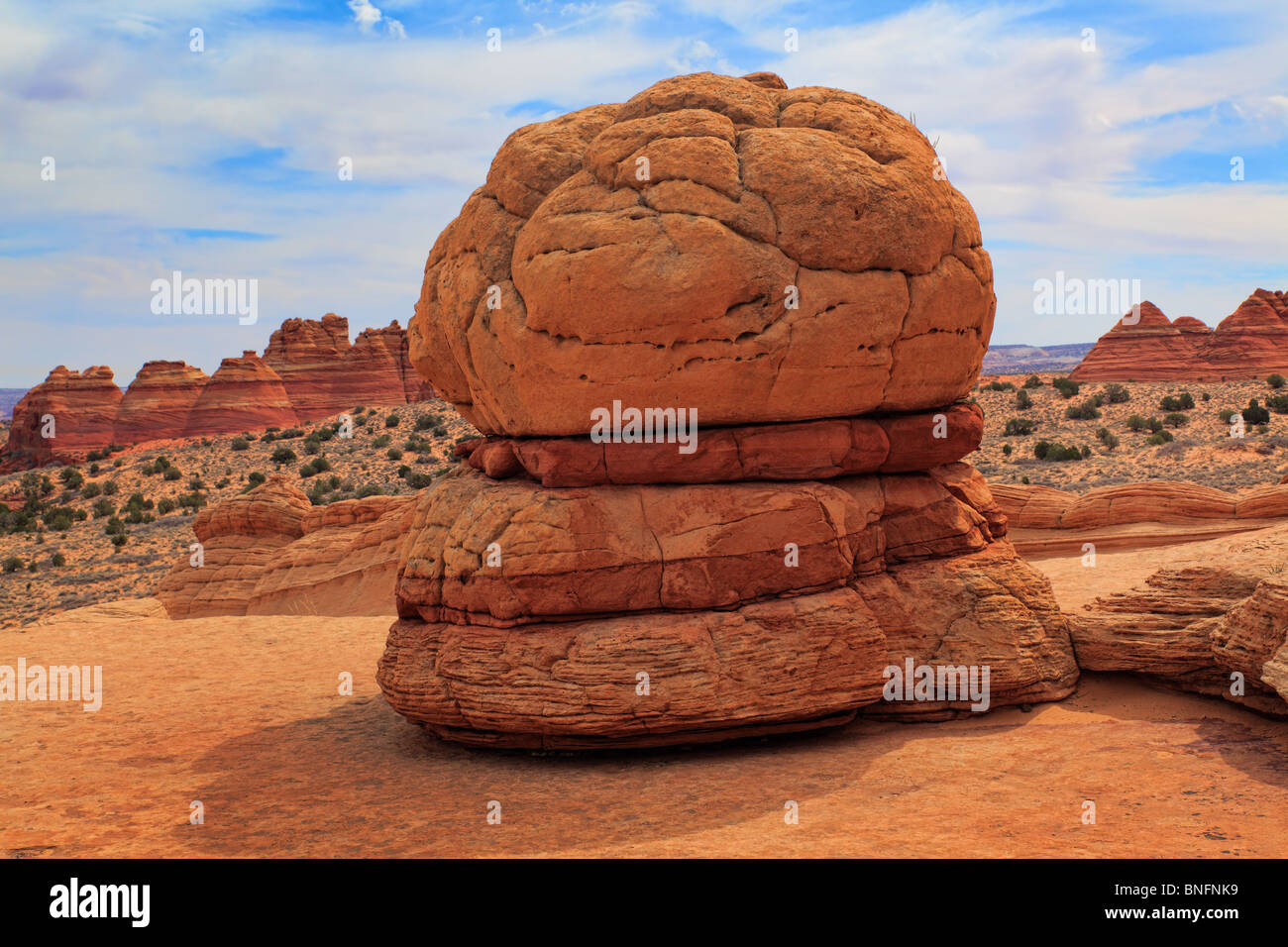 Eroded sandstone formation resembling a hamburger in Vermilion Cliffs National Monument, Arizona - Stock Image