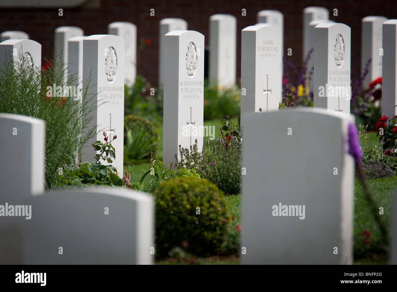 Gravestones in the new British War Graves Commission's cemetery in Fromelles, France holding the bodies of  - Stock Image
