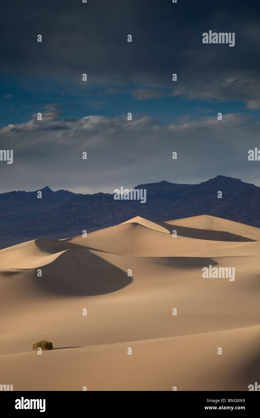 Mesquite Dunes near Stovepipe Wells Death Valley CA USA Stock Photo