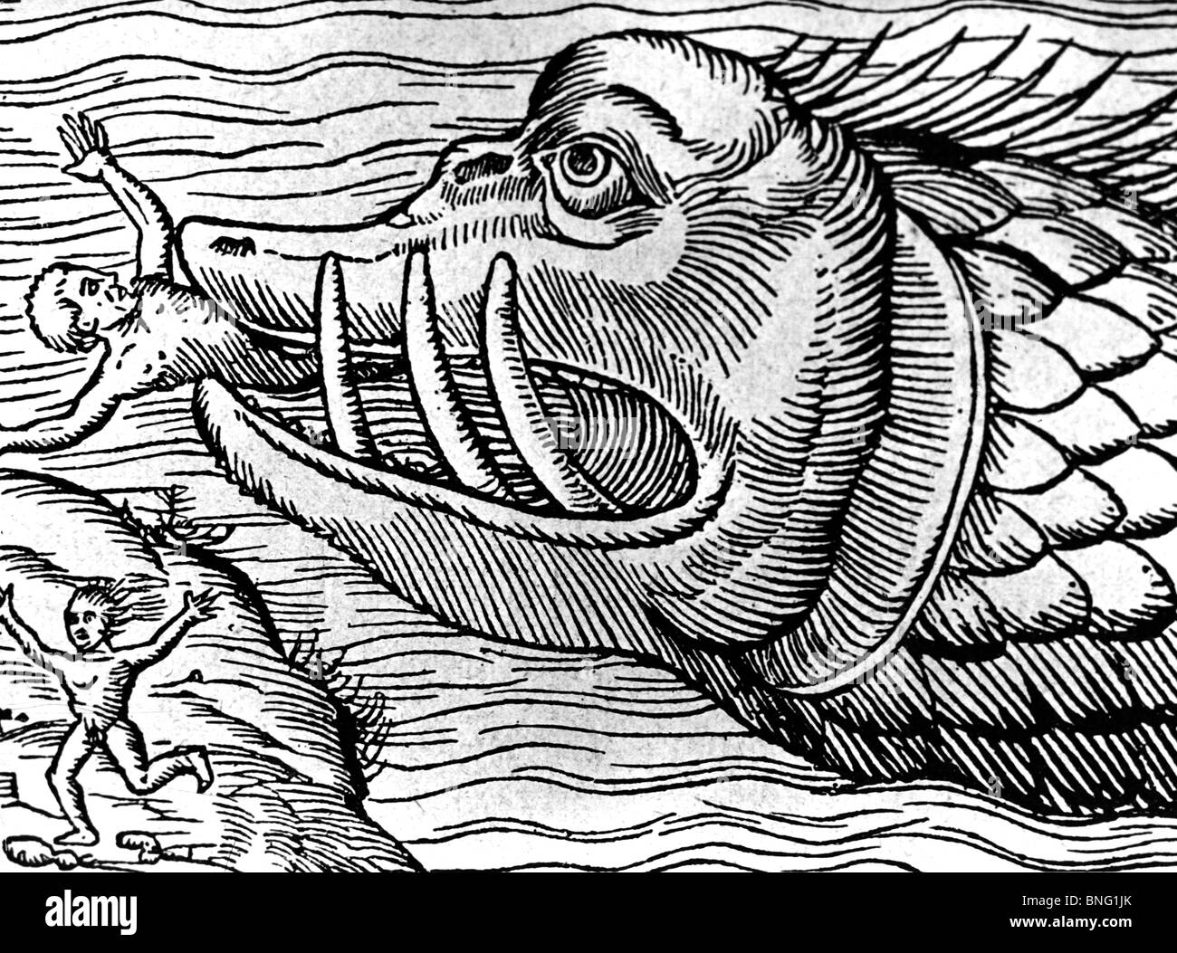 Mythological Sea Creature by artist unknown - Stock Image