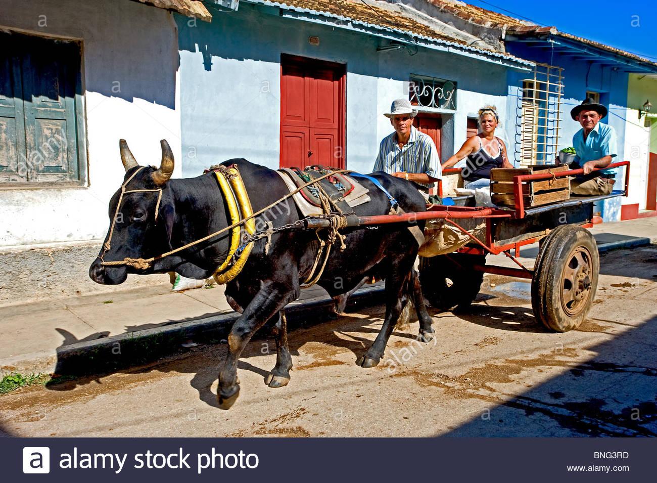 Public transport. Trinidad,province of Sancti Spiritus,Cuba - Stock Image