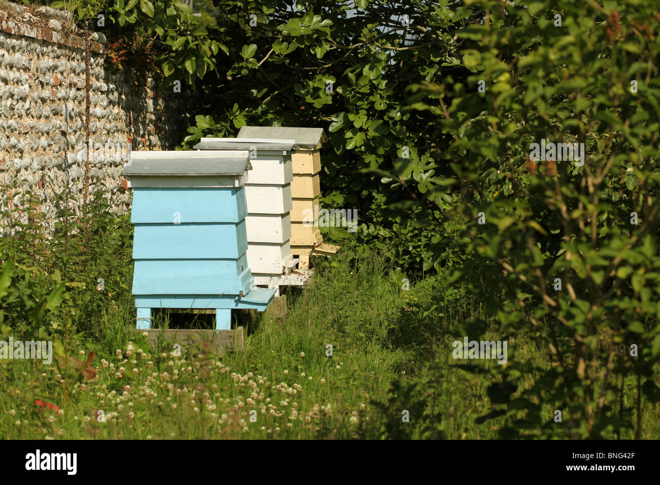 Three Brightly Coloured Beehives - Stock Image