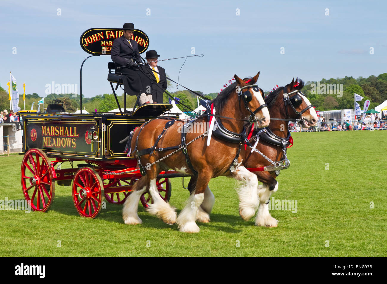 Display of 'heavy horses' at the 2010 Northumberland County Show held in Corbridge, England - Stock Image