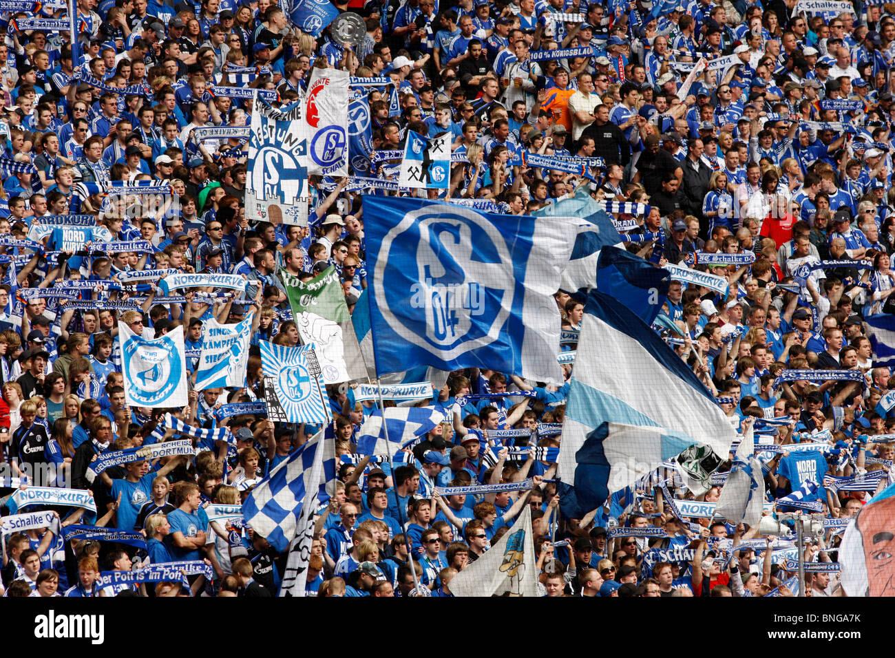 Football, soccer, supporter of German major league football club Schalke 04, in the Veltins Arena stadium. - Stock Image