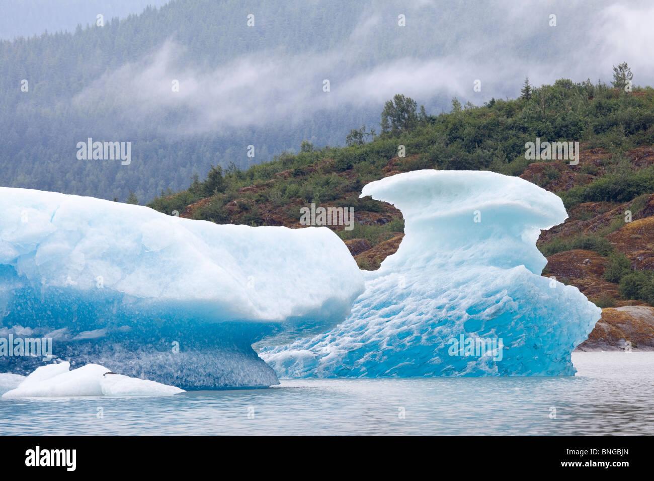 USA; Alaska; Juneau; Mendenhall Glacier; Iceberg; Mendenhall Lake Stock Photo