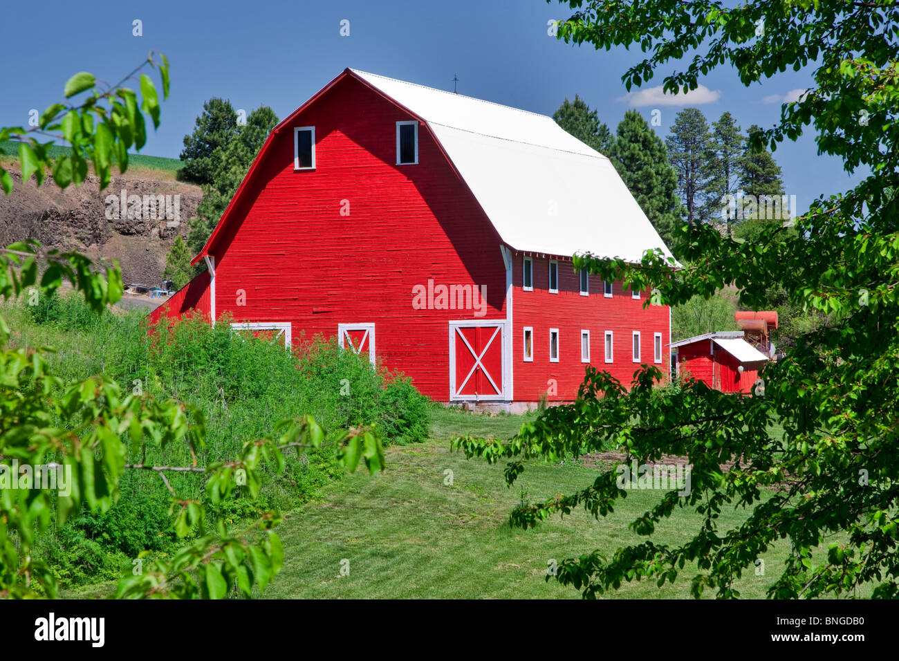Red barn. The Palouse, near Colfax, Washington. - Stock Image
