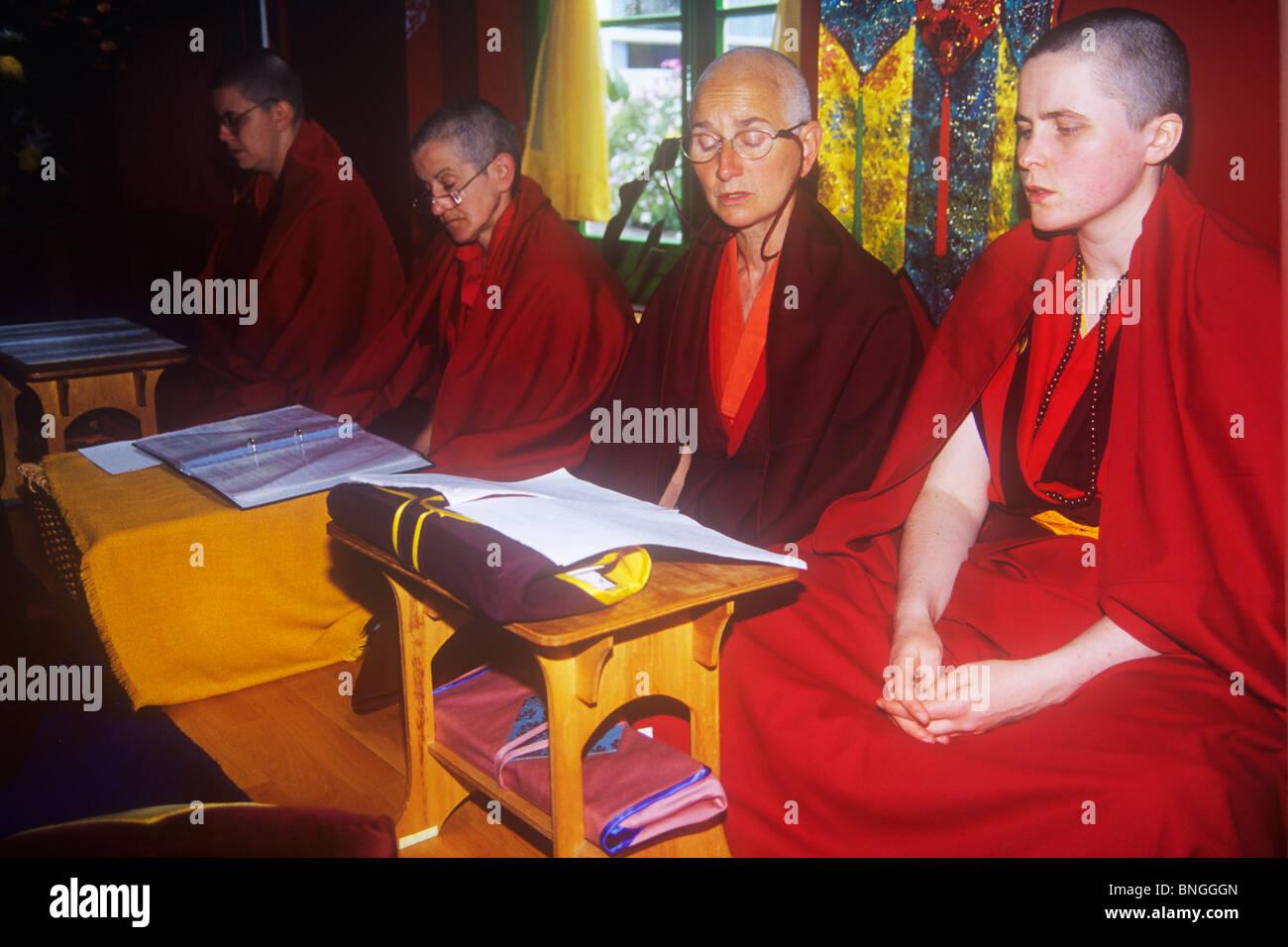 Western nuns worship in the Samye Dzong Tibtan Buddhist temple in South London - Stock Image