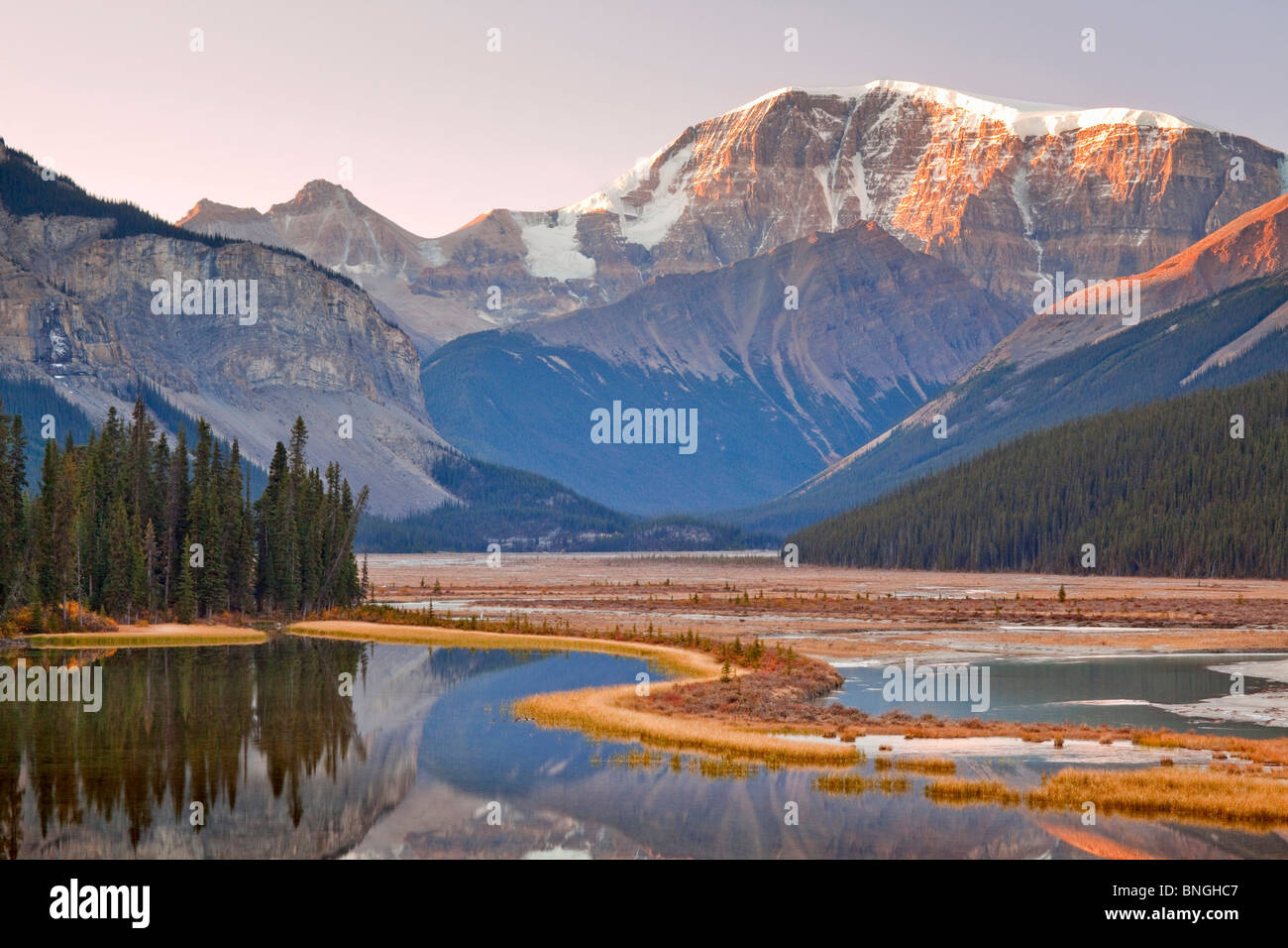 Mount Kitchener Stock Photos & Mount Kitchener Stock Images - Alamy