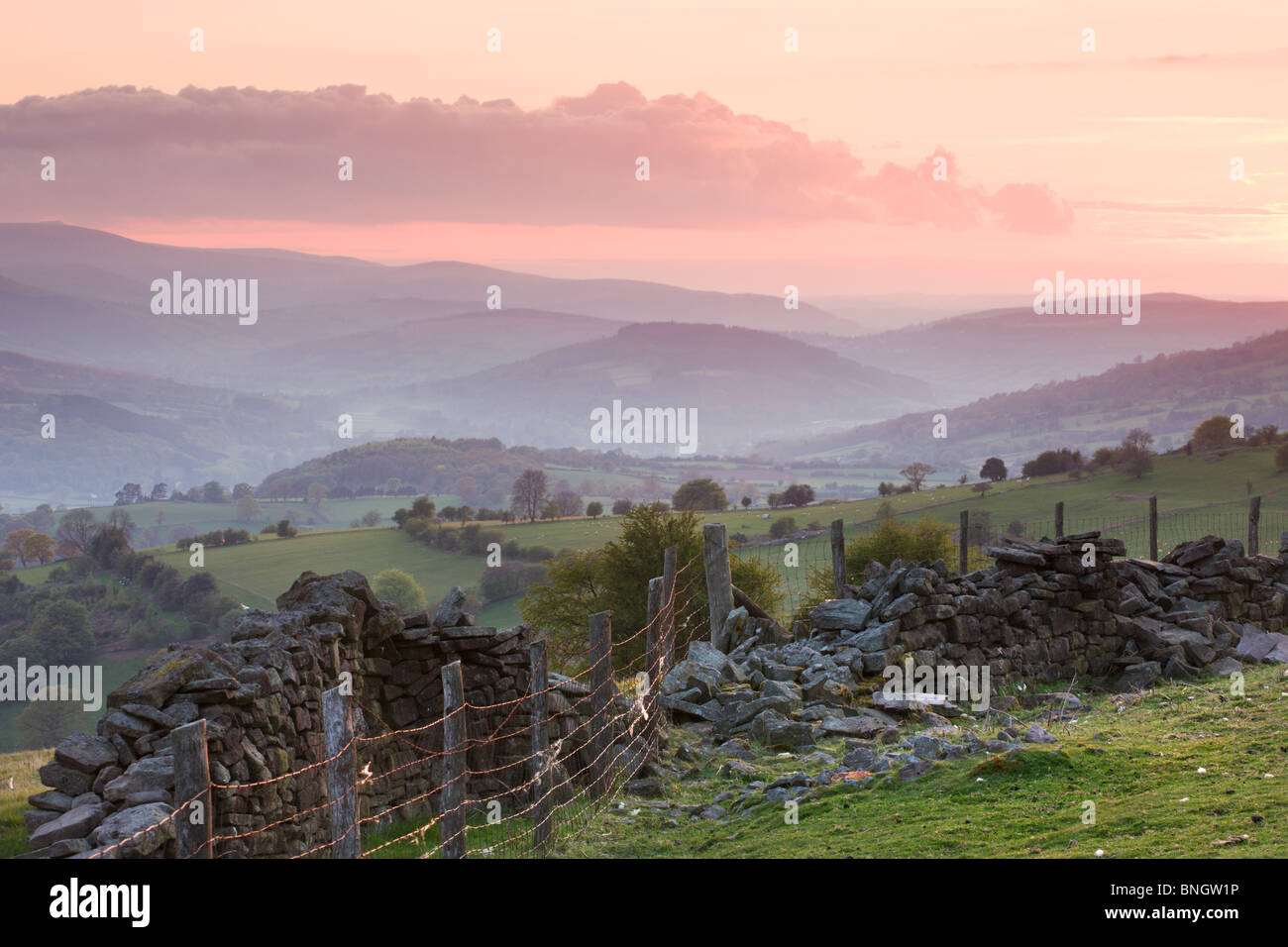Dry stone wall on the slopes of Sugar Loaf mountain, looking towards the Usk Valley, Brecon Beacons National Park, - Stock Image