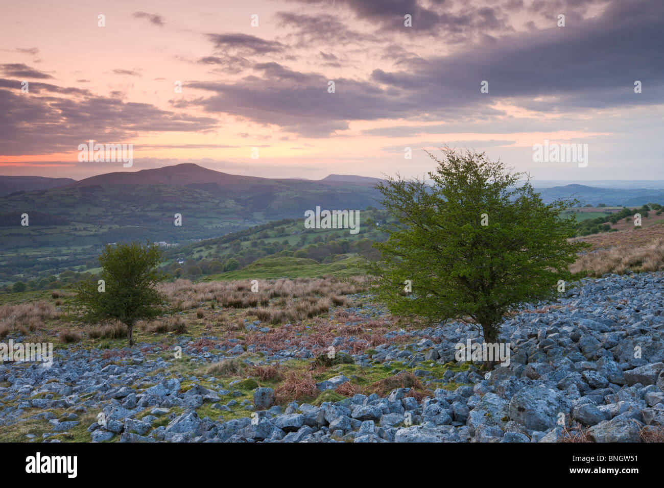 Sugarloaf Mountain at dawn from Llangattock Escarpment, Brecon Beacons National Park, Powys, Wales. - Stock Image