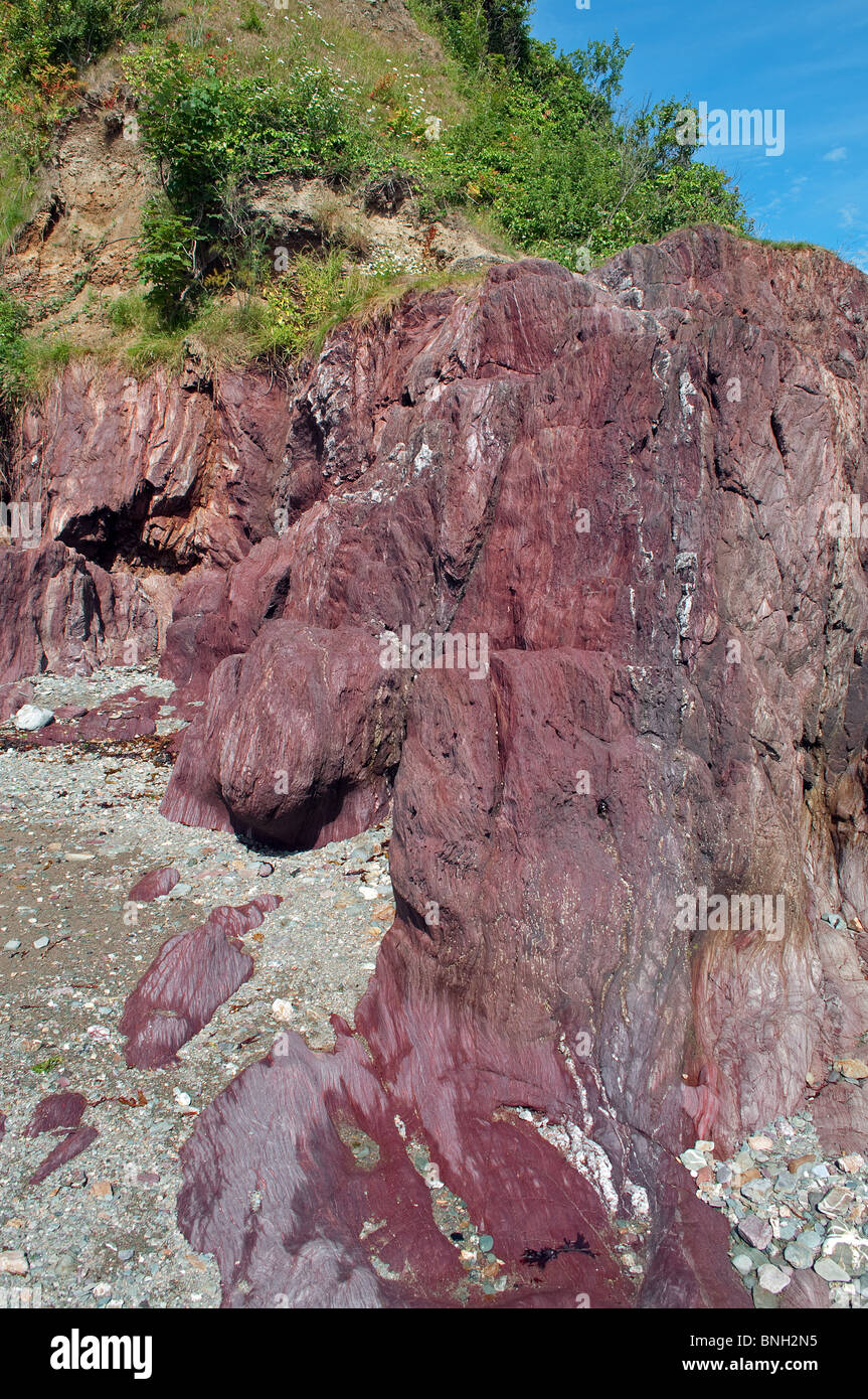 the distinctive red sandstone rock at cawsand in cornwall, uk - Stock Image