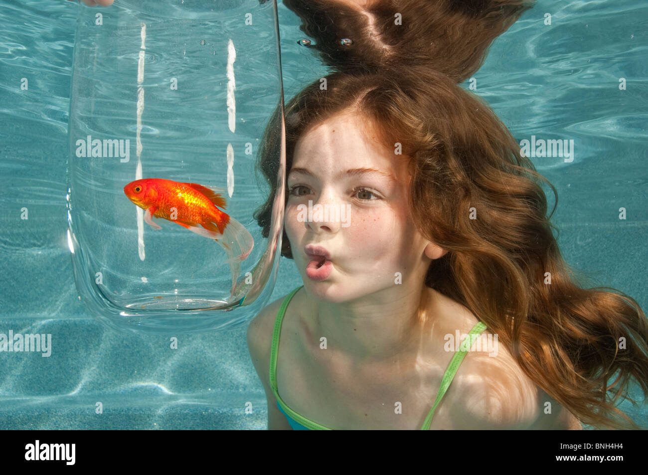 Swimming Underwater In Swimming Pool Looking At Goldfish In Glass Stock Photo 30494944 Alamy